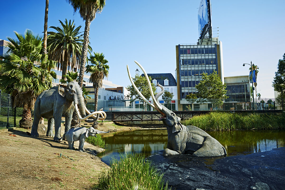 Weiss/Manfredi to lead masterplan of La Brea Tar Pits